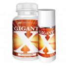 Gigant-X